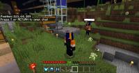 Minecraft Screenshot 2019.11.03 - 20.50.45.69.png