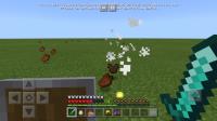 Screenshot_20191114-082414_Minecraft.jpg