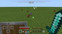 Screenshot_20191114-082329_Minecraft.jpg
