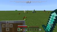 Screenshot_20191114-082146_Minecraft.jpg