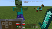 Screenshot_20191114-082136_Minecraft.jpg