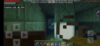 Screenshot_20191117-000501_Minecraft.jpg