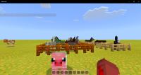 Minecraft 11_29_2019 11_57_44 AM.png