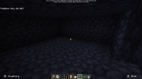 Screenshot_20191221-170956_Minecraft.png