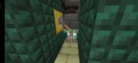 Screenshot_2020-01-31-03-16-00-588_com.mojang.minecraftpe.jpg