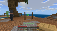 Minecraft 2_9_2020 7_34_32 PM.png