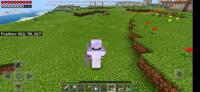 Screenshot_20200222_162017_com.mojang.minecraftpe.jpg