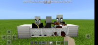 Screenshot_20200301_212549_com.mojang.minecraftpe.jpg