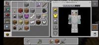 Screenshot_2020-03-02-13-59-09-043_com.mojang.minecraftpe.png
