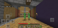 Screenshot_20200304-161609_Minecraft.jpg
