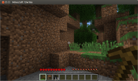 MinecraftNoEXP.png