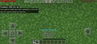 Screenshot_20200415_005923_com.mojang.minecraftpe.jpg