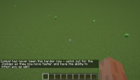 20w16a.png