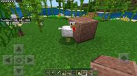 Chicken stuck in polished granite.-1.jpg