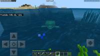 Turtle slow in water-3.jpg