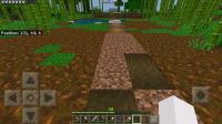 Grass not growing-3.jpg