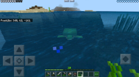 Turtle being slow in water when im out of it..jpg