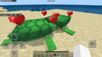 Turtles breeding.jpg