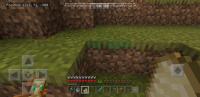 Screenshot_20200501-065902_Minecraft.jpg