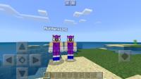 Screenshot_20200502-120558_Minecraft.jpg