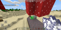 Screenshot_20200503-185929_Minecraft.jpg