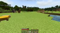 Minecraft 08_05_2020 14_28_07.png