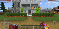 Screenshot_20200508-170028_Minecraft.jpg