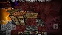 Screenshot_20200505-093736_Minecraft.jpg