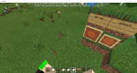 Minecraft 10 May 2020 13_47_11.png