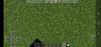 Screenshot_20200513_140057_com.mojang.minecraftpe.jpg