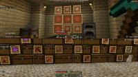 Minecraft (8).png