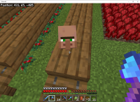 Minecraft 5_20_2020 3_40_04 PM.png