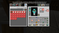 Screenshot_20200521-165801_Minecraft.jpg