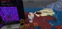 Screenshot_20200522_152646_com.mojang.minecraftpe.jpg