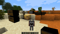 Bug Minecraft 2.png