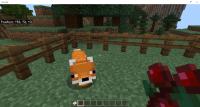 Fox having Bread....png