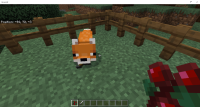 Fox Holding Sword in Mouth....png