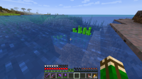 Sugar cane under vatten.png