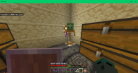 Minecraft 01-07-2020 PM 06_29_54.png