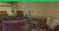 Minecraft 01-07-2020 PM 06_46_33.png