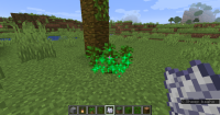 1 - this tree doesn't grow with vines below.png