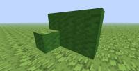 Grass blocks.png