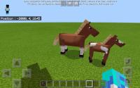 Screenshot_20200724-191934_Minecraft.jpg