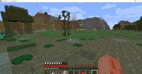 Minecraft 1.16.1 7_26_2020 6_06_03 PM.png