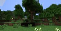 Tree in 1.5.2.jpg