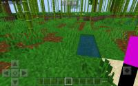 Screenshot_20200829-132943_Minecraft.jpg