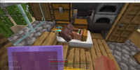Minecraft Bedrock Villager Sleeping 9_25_2020 3_36_45 AM.png