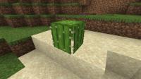 Minecraft 08_10_2020 15_30_54.png
