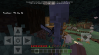 Screenshot_2020-10-28-13-07-57-455_com.mojang.minecraftpe.jpg