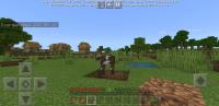 Minecraft_2020-11-08-12-20-51.jpg